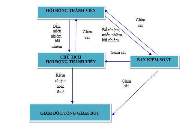 Cơ cấu tổ chức quản lý công ty tnhh